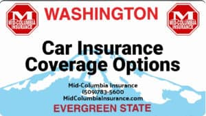 Car Insurance Coverage Options