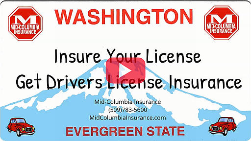 Video - Insure Your License